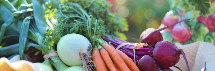 Lähiruokaa ja monipuolisia maaseudun tuotteita